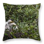 Nesting Chicks Throw Pillow