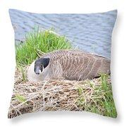 Nesting Goose Throw Pillow