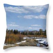Nesting Grounds Throw Pillow