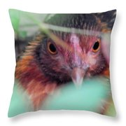 Nesting In The Wild Throw Pillow