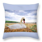 Nesting Mute Swan At Abbotsbury - Impressions Throw Pillow