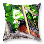 Nesting Robin Throw Pillow