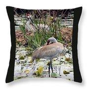 Nesting Sandhill Crane Pair Throw Pillow by Carol Groenen