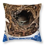 Nesting Wren Throw Pillow