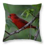 Nestled In The Trees Throw Pillow