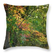 Nestled In The Woods Throw Pillow