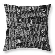 Net Leaf Hackberry Winter  Branch Abstract  Throw Pillow
