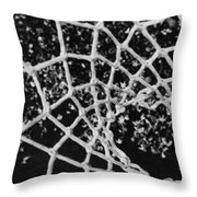 Net Throw Pillow by Michael Ringwalt