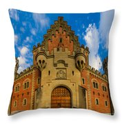 Neuschwanstein Castle Throw Pillow