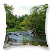 Neuse Falls Trail Throw Pillow