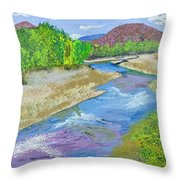 Nevada Oasis Throw Pillow