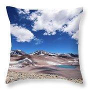 Nevado Ojos Del Salado And Laguna Negra Throw Pillow