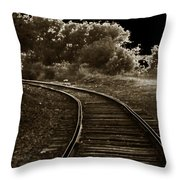 Never A Straight Path Throw Pillow