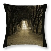 Never Ending Throw Pillow