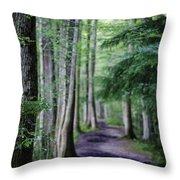 Never Ending Trail Throw Pillow