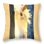 Hold On To Your Dream And Never Ever Give Up Throw Pillow by Hilde Widerberg