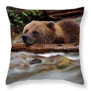 Never Give Up - Wilderness Art Throw Pillow
