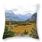 New And Old Snow Throw Pillow