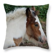 New Arrival Throw Pillow
