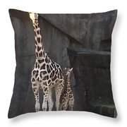 New Baby Giraffe Throw Pillow