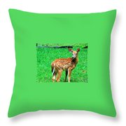 New Beginings  Throw Pillow