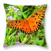 Windows From Heaven Orange Butterfly Throw Pillow