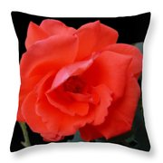 New Bloom Throw Pillow