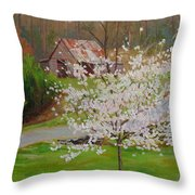 New Blossoms Old Barn Throw Pillow