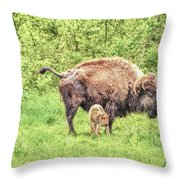 New Born Bison Throw Pillow