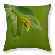 New Born Leaves Throw Pillow