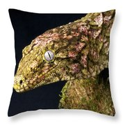 New Caledonian Giant Gecko Throw Pillow