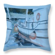 New Dawn In The Late Afternoon Throw Pillow