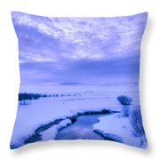 New Day At New Meadows Throw Pillow