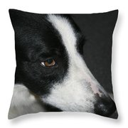 New Dog Friend Throw Pillow