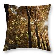 New England Autumn Forest Throw Pillow
