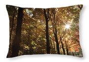 New England Autumn Forest Throw Pillow