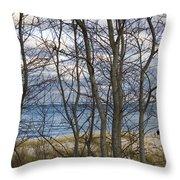 New England Massachusetts Beach  Scene Throw Pillow