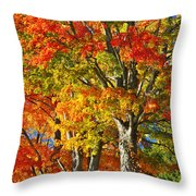 New England Sugar Maples Throw Pillow