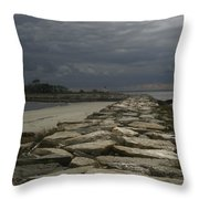 New England Sunlight  Throw Pillow
