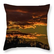 New Gold Dream Throw Pillow