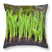 New Green Spring Shoots Throw Pillow
