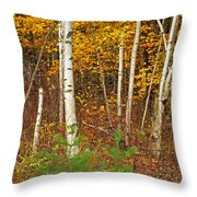 New Growth Old Leaves Throw Pillow