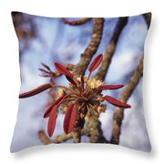 New Growth On A Shea Tree.  A Flower Throw Pillow