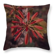 New Growth On A Shea Tree Throw Pillow