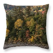 New Hampshire Color Along The Swift River Throw Pillow