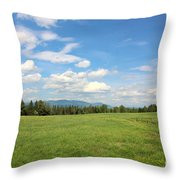 New Hampshire Mountain Meadow Throw Pillow