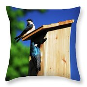 New Home Inspection Throw Pillow