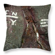 New Jersey New York State Line Of The Appalachian Trail Throw Pillow