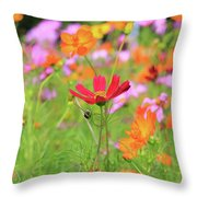 New Jersey Wildflowers Throw Pillow