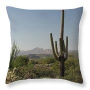 New Mexican Desert Throw Pillow